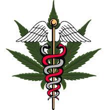 1.9 miljoen euro voor studie naar effect cannabis op chronische pijn