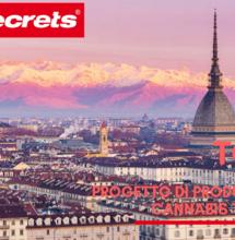 Progetto di produzione della Cannabis terapeutica a Torino