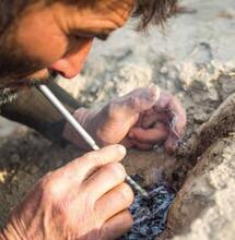 Le cannabis afghan, un héritage culturel et génétique