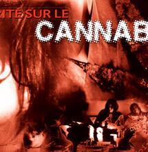 Les meilleures campagnes anti-cannabis françaises
