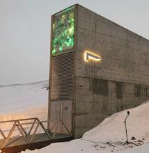 The Doomsday Vault Safeguards Humanity's Cannabis Seeds