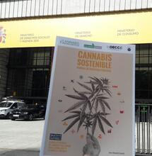 OECCC entrega al Ministerio de Derechos Sociales un informe para alinear políticas de Cannabis con la Agenda 2030 de la ONU