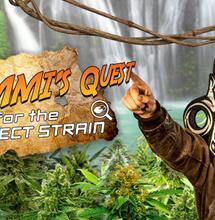 Zamni's Quest