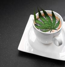 From Highspresso to Tequila Highrise, Canna Drinks Can Be Real Fun