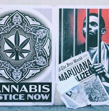 Democrats to Introduce Bill in Senate to Federally Decriminalize Cannabis