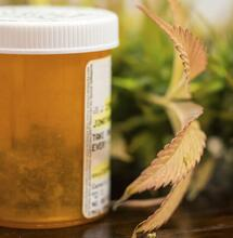 """""""Ingrediënt in cannabis kan psychose tegengaan"""""""