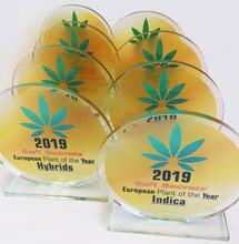 European Plant of the Year 2019