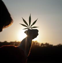 Investire nel sociale il capitale della cannabis. L'esempio del Colorado