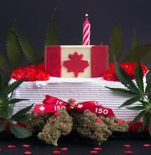 Focus Canada: Cannabis 2.0 le potenzialità degli edibles in un mercato regolato