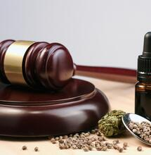 Dal Metodo Di Bella alla Cannabis medica, breve storia della legge 94/98