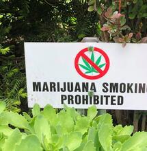 sign against marijuana.