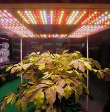¿Cómo calcular la factura de luz de tu indoor?