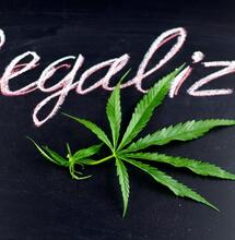 sign with a marijuana leaf and the words legalize!