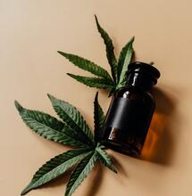 """UK to run trials on cannabis mouth spray """"Sativex"""" as treatment for brain tumours."""