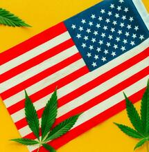 The american flag with some marijuana.