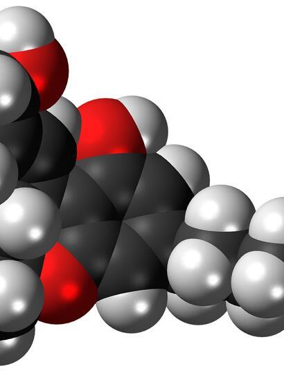 3D visual representation of marijuana main chemical THC.