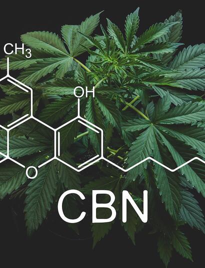 Le CBN est-il le nouveau cannnabinoïde tendance ?