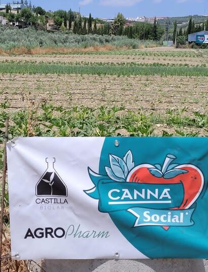 Proyecto-social-Canna
