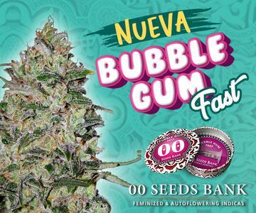 00-Seeds