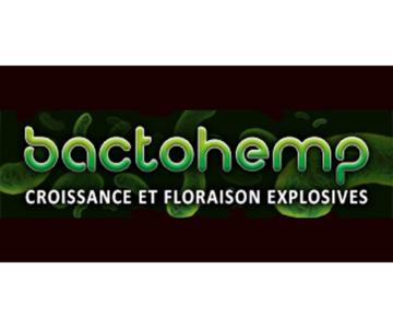Agrobacteria B