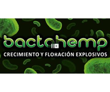 Arobacterias