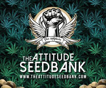 The Attitude Seed Bank