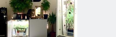 Super Green Lab