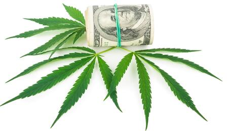leaves of cannabis and american dollars.