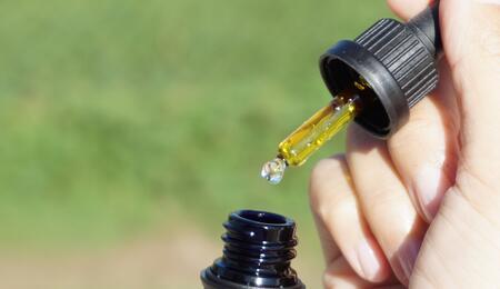 Efecto séquito en el cannabis: toda la planta es mejor que un solo compuesto.
