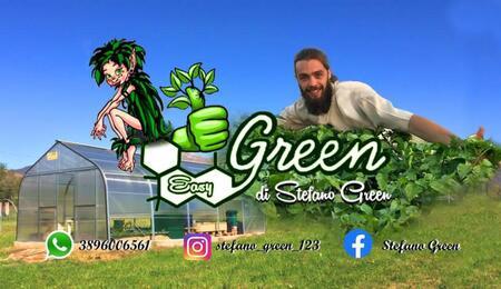 scuola di coltivazione idroponica per grower