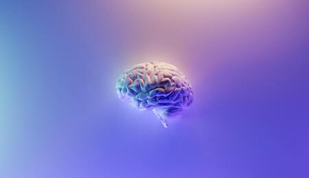 can cannabis help in the treatment of brain tumors?
