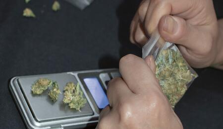 Cannabis als banenmotor