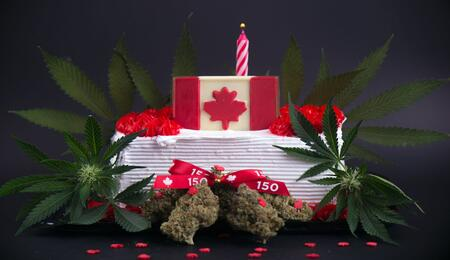 cannabis 2.0 edibles Canada