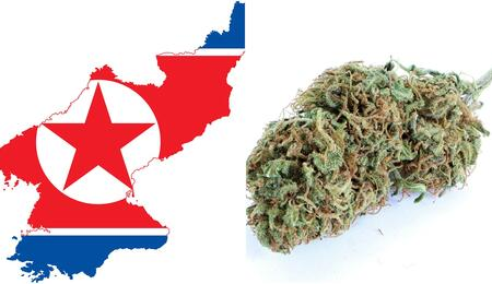 map of North Korea on the left of the collage photo and a chunk of weed that looks close enough to the country's shape on the right.