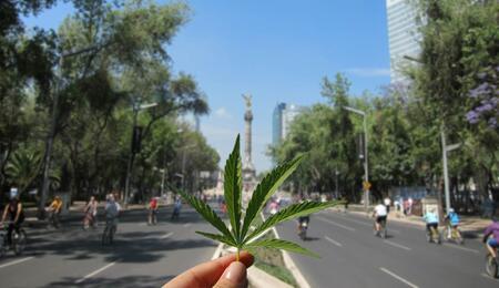 Legalizzazione cannabis in Messico: l'approfondimento