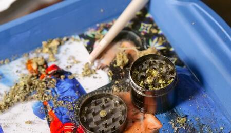 cannabis-hasj-wiet