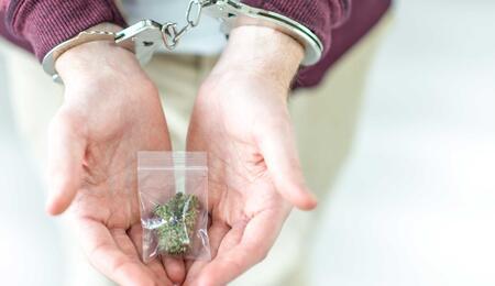 Polizia e legalizzazione della cannabis