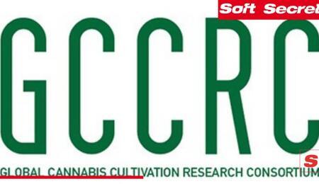 Questionario Internazionale sulla Coltivazione Domestica di Cannabis