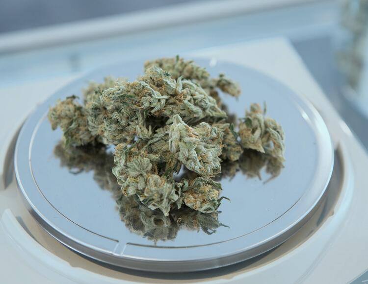 Nový zákon přinese zvýšení limitu THC