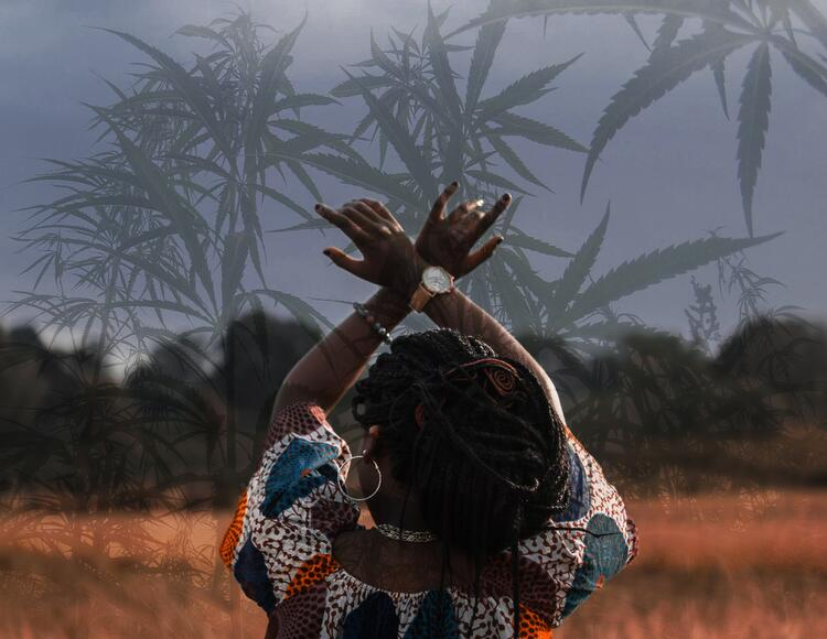 Grazie per le foto a Ian Kiragu di Unsplash