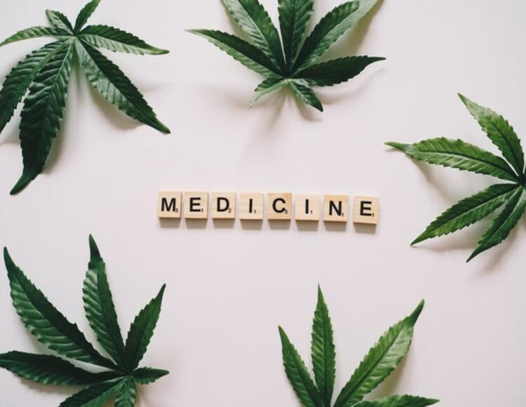 "leaf and ""medicine"""