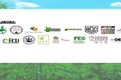 evento-cannabis