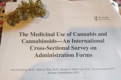 trabajo-científico-cannabis