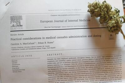estudio-cannabis