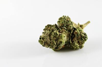 cogollo-cannabis