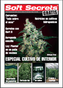 Soft Secrets Spanish 06-01