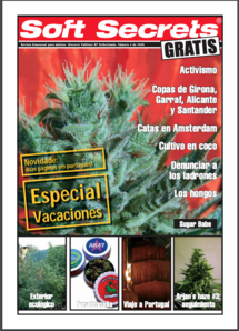 Soft Secrets Spanish 06-04
