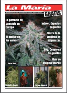 Soft Secrets Spanish 04-05